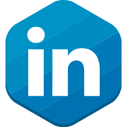 linkedin, professional network, social network icon
