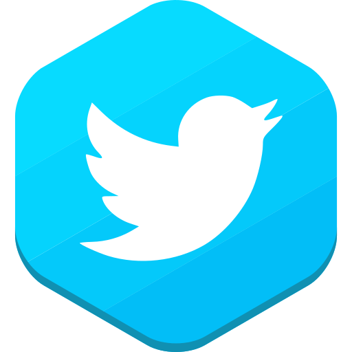 social network, twitter icon