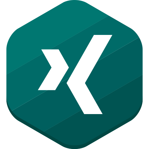 social network, xing icon