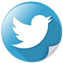bird, communication, logo, network, tweet, twitter icon