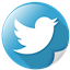 bird, communication, logo, network, tweet, twitter icon