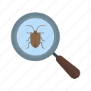 bug, computer, development, error, security, virus, website icon