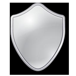 Grey Shield Icon