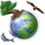 browser, earth, global, globe, international, internet, planet, world icon