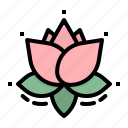 flower, lotus, spa, wellness, yoga