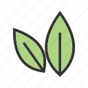 autumn, fall, green, leaf, leaves, nature, plant icon