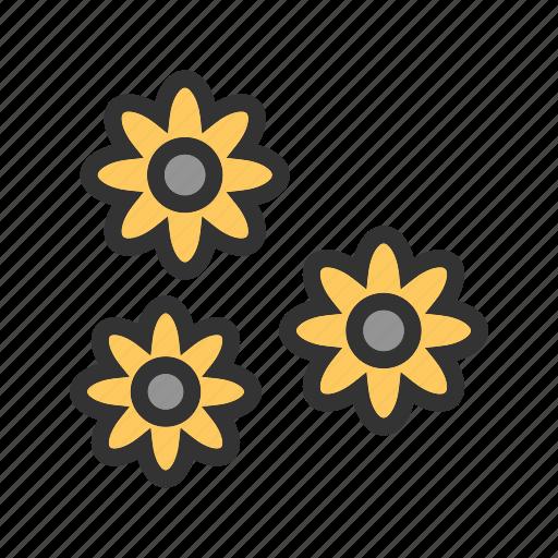 blossom, decoration, flower, flowers, garden, plant, sunlight icon