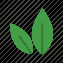 autumn, fall, green, leaf, leaves, nature, plant icon