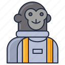monkey, astronaut, cosmonaut, space monkey
