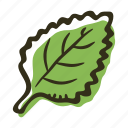 cook, food, herb, ingredient, leaf, mint, spice icon