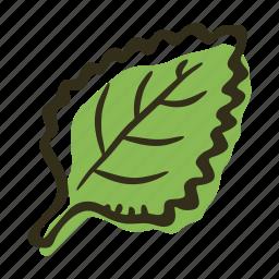 cook, food, herb, ingredient, leaf, mint, spice icon