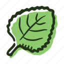 cook, food, herb, ingredient, leaf, melissa, spice icon
