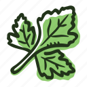 cook, food, herb, ingredient, leaf, parsley, spice icon