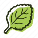 cook, food, herb, ingredient, leaf, oregano, spice icon
