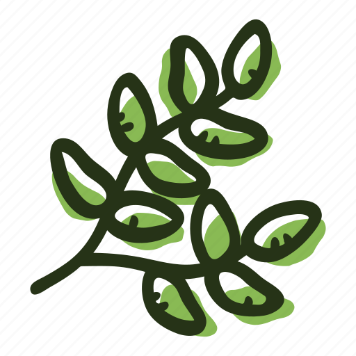 cook, food, herb, ingredient, leaf, spice, thyme icon