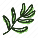 cook, food, herb, ingredient, leaf, spice, tarragon icon