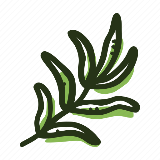 cook, food, herb, ingredient, plant, savory, spice icon