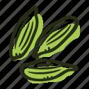cardamom, food, green cardamom, herb, ingredient, plant, spice