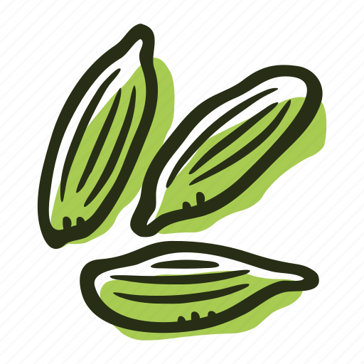 cardamom, food, green cardamom, herb, ingredient, plant, spice icon
