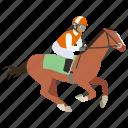 equestrian, horse, horse riding, jockey, race, rider, riding