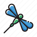 dragonfly, insect icon