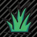 grass, plant icon