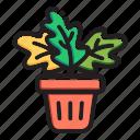 floral, flower, green, leaf, plant, pot, tree icon