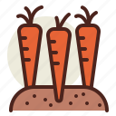 carrots, gardening, seasonal, spring icon
