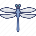 bug, dragonfly, ecology, insect, nature, wildlife icon