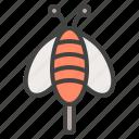 bee, bug, fly, honey, nectar, spring