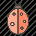 bug, ladybird, ladybug, virus