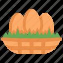 eggs, nest, chick, farm, animal, wildlife, bird