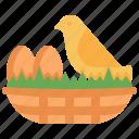 nest, egg, bird, chick, farm, wildlife, wild