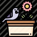 bird, flower, pot, ornithology, animals, pigeon