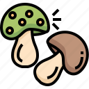 mushroom, organic, nature, vegan, healthy, food