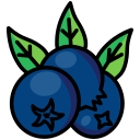 berries, berry, blue berries, cranberries, food, fruit icon