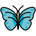 butterfly, insect, papillon, staroffice, summerbird icon