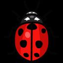 bug, ladybird, ladybug, virus icon
