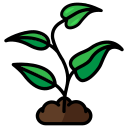 eco, growth, plant, science, sprout icon