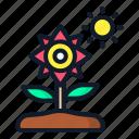 flower, nature, spring, floral