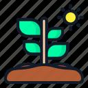 plant, leaf, nature, spring