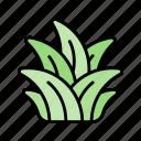 grass, bush, weed, spring, nature, season