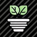 sprout, plant, bud, leaf, pot, spring, nature