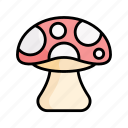 mushroom, fungi, fungus, vegetable, spring, nature, season icon