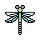 insect, dragonfly, bug, spring, nature, season