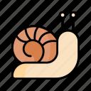 snail, slug, mollusk, spring, nature, season