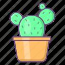 cactus, pot, plant, decoration, interior