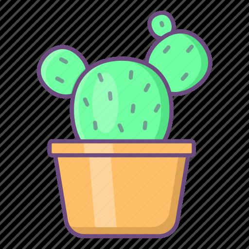 Cactus, pot, plant, decoration, interior icon - Download on Iconfinder