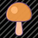 mushroom, plant, spring, garden, food
