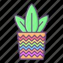 plant, pot, decoration, leaves, leaf, spring, flower